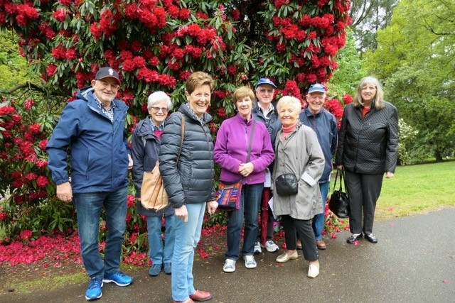 garden group oct 2018 olinda Rhododendrum gdns
